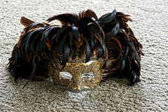 Carnival mask lying on a gray carpet in the room. Venetian mask with feathers on the matter royalty free stock images