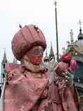 Carnival: mask in pink. Carnival of Venice, Italy: Woman wearing beautiful mask and costume in variations of pink Royalty Free Stock Photography