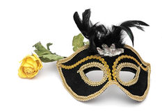 Carnival mask and rose Stock Image