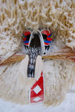 Carnival Mask In The Snow Royalty Free Stock Images