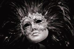 Carnival Mask Venice Stock Image