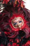 Carnival Mask in the Venice Italy Royalty Free Stock Photos