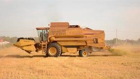 Wheat harvesting stock video footage