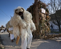 Carnival masker in fur at the 'Busojaras', the carnival of winter's funeral Stock Images