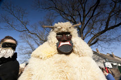 Free Carnival Masker In Fur At The  Busojaras , The Carnival Of Winter S Funeral Royalty Free Stock Photography - 50338587
