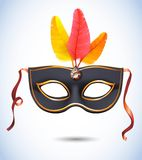 Carnival metallic mask with feathers vector illustrations Stock Photo