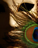 Carnival / Opera mask with black background Royalty Free Stock Photo