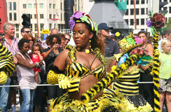 Carnival Parade Royalty Free Stock Photo