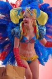 Carnival parade - Loule Royalty Free Stock Photography