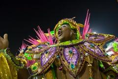 Carnival 2014 -  Rio de Janeiro. RIO DE JANEIRO, RJ /BRAZIL - MARCH 02:  parade of samba schools Beija-Flor de Nilopolis, especial group in Carnival 2014 on Stock Photography