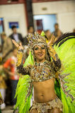 Carnival 2014 -  Rio de Janeiro Stock Images