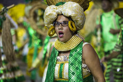 Carnival Samba Dancer Brazil Royalty Free Stock Image