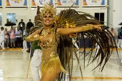 Carnival 2019 Santa Cruz royalty free stock photo