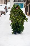 CARNIVAL IN VEVCANI, MACEDONIA. VEVCANI, MACEDONIA - JANUARY 13, 2012: A man dressed up as a tree during the Vevcani Carnival, southwestern Macedonia Stock Image