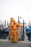 Carnivale Mask in the Venice Italy Stock Photography