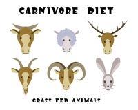 Carnivore Diet - Vector. Grass fed animals - illustration. Vector illustration. - Vector stock illustration