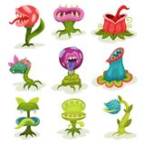 Carnivore plants set, colorful fantastic malicious killer flowers with teeth vector Illustrations on a white background. Carnivore plants set, colorful fantastic royalty free illustration