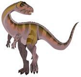 Carnivorous dinosaur Allosaurus. Isolated on white vector illustration Stock Images