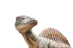 Carnivorous Dinosaur from side. Royalty Free Stock Photo