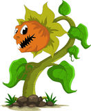 Carnivorous plant cartoon. Vector illustration of carnivorous plant cartoon royalty free illustration
