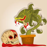 Carnivorous plant and human skull Royalty Free Stock Image