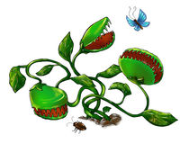 Carnivorous plant hunting. Cartoonish carnivorous plant hunting bugs and butterflies. Digital art Royalty Free Stock Photography