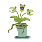 Carnivorous plant in a pot. Vector illustration for Halloween, isolated on white. vector illustration