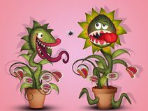 Carnivorous plants and flies. Illustration of carnivorous plants and flies royalty free illustration