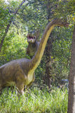Carnotaur attacking brachiosaurus Stock Image