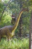 Carnotaur attacking brachiosaurus Stock Image