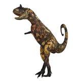 carnotaurus 01 Стоковое Изображение RF
