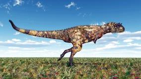 Carnotaurus del dinosaurio Fotografía de archivo libre de regalías