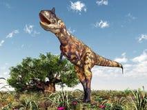 Carnotaurus del dinosauro Immagini Stock
