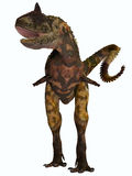 Carnotaurus Front Profile. Carnotaurus was a theropod carnivorous dinosaur that lived in Argentina in the Cretaceous Period Stock Photo