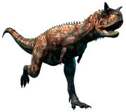 Carnotaurus. A large dinosaur from the Cretaceous era Royalty Free Stock Photography