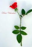 Caro biglietto di S. Valentino Fotografia Stock