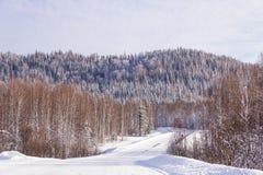 Caro gelado fabuloso nas montanhas de Altai foto de stock