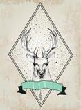 Caro logotipo do vintage Projeto para o t-shirt Fotografia de Stock Royalty Free