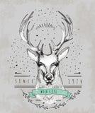 Caro logotipo do vintage Projeto para o t-shirt Fotos de Stock