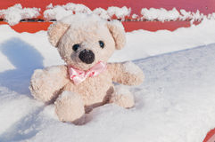 Caro orsacchiotto dell'amico Fotografie Stock
