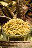 The Carob (Ceratonia siliqua). The carob plant (Ceratonia siliqua) flour stock image