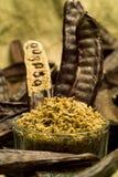 The Carob (Ceratonia siliqua). Flour stock image