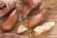 Carob delicious fruit - Hymenaea courbaril. Top view. Carob fruit - Hymenaea courbaril. Wood table stock photos