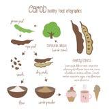 Carob infographics. Vector illustration royalty free illustration