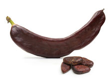 Carob pod and seeds isolated Royalty Free Stock Image