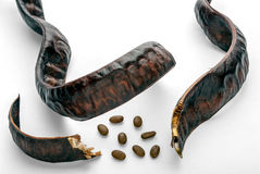 Carob pods Royalty Free Stock Images