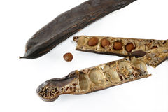 Carob pods / St. John's bread with seeds, close up, isolated on Royalty Free Stock Photos