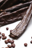 Carob seems Stock Photography