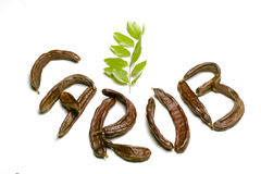 Carob written w pods sign. Carob written with carob pods as logo Royalty Free Stock Photo
