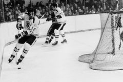 Carol Vadnais, Boston Bruins. Royalty Free Stock Photography